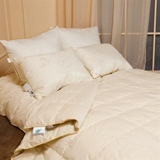 Одеяло пуховое Natures Медовый поцелуй 140х205 всесезонное