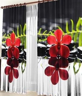 Фотошторы 3D Ночной цветок